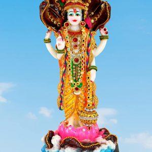 Resin Vishnu Ji